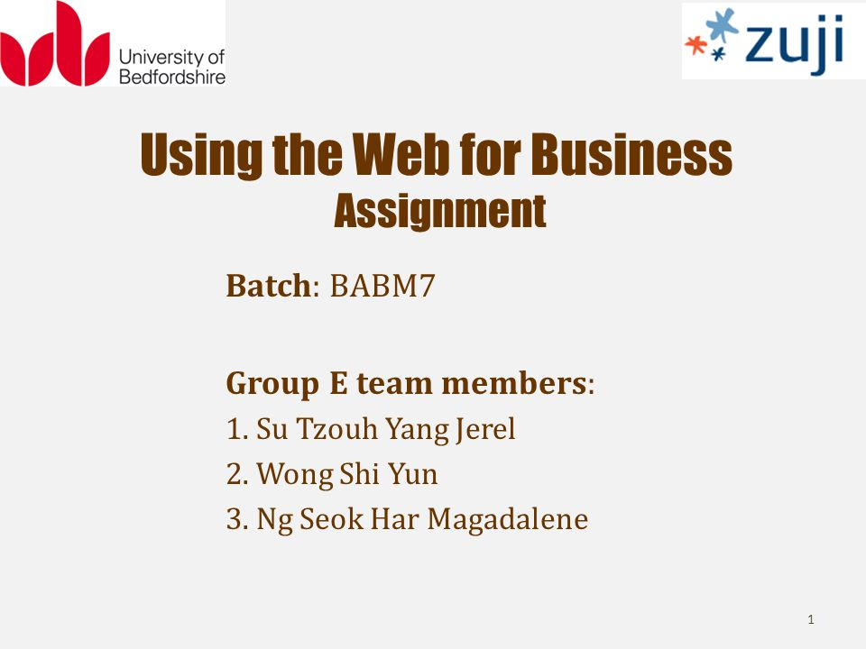Using the Web for Business Assignment Batch: BABM7 Group E team members: 1.