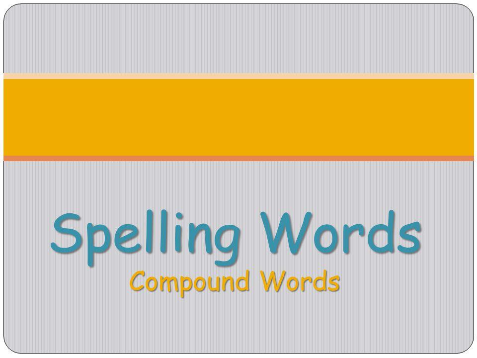 Build Concept Vocabulary Build Concept Vocabulary calamity, destination, updrafts Problems Safe Travel