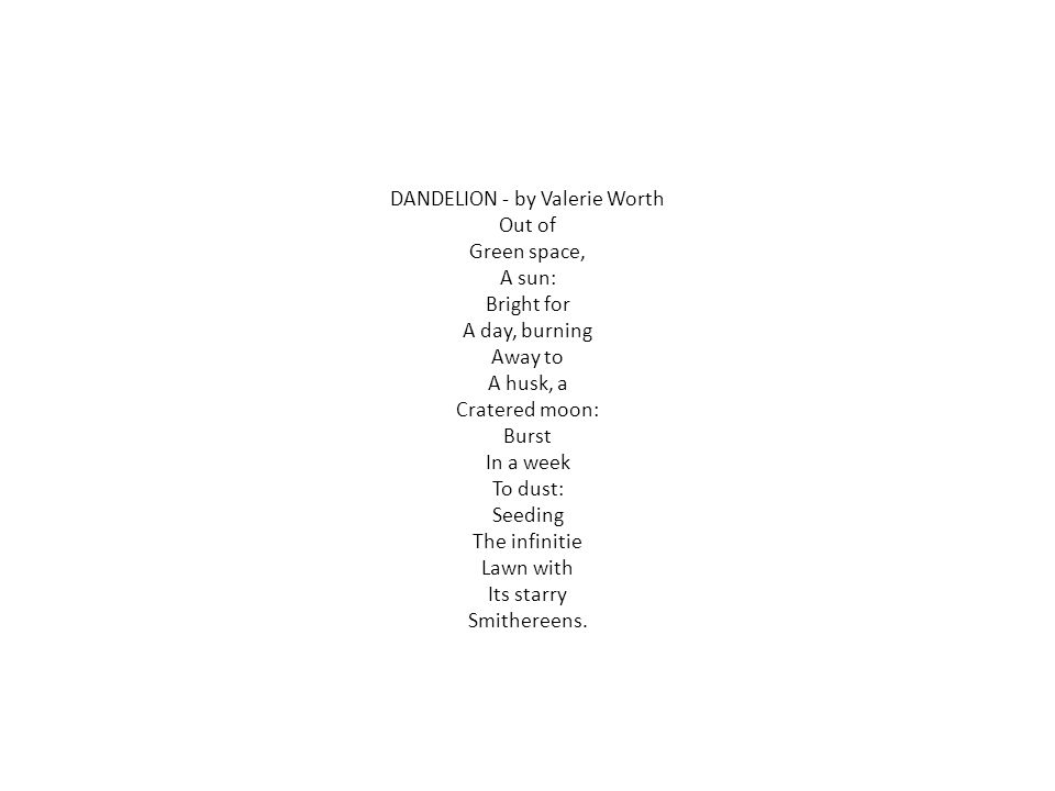DANDELION - by Valerie Worth Out of Green space, A sun: Bright for A day, burning Away to A husk, a Cratered moon: Burst In a week To dust: Seeding The infinitie Lawn with Its starry Smithereens.