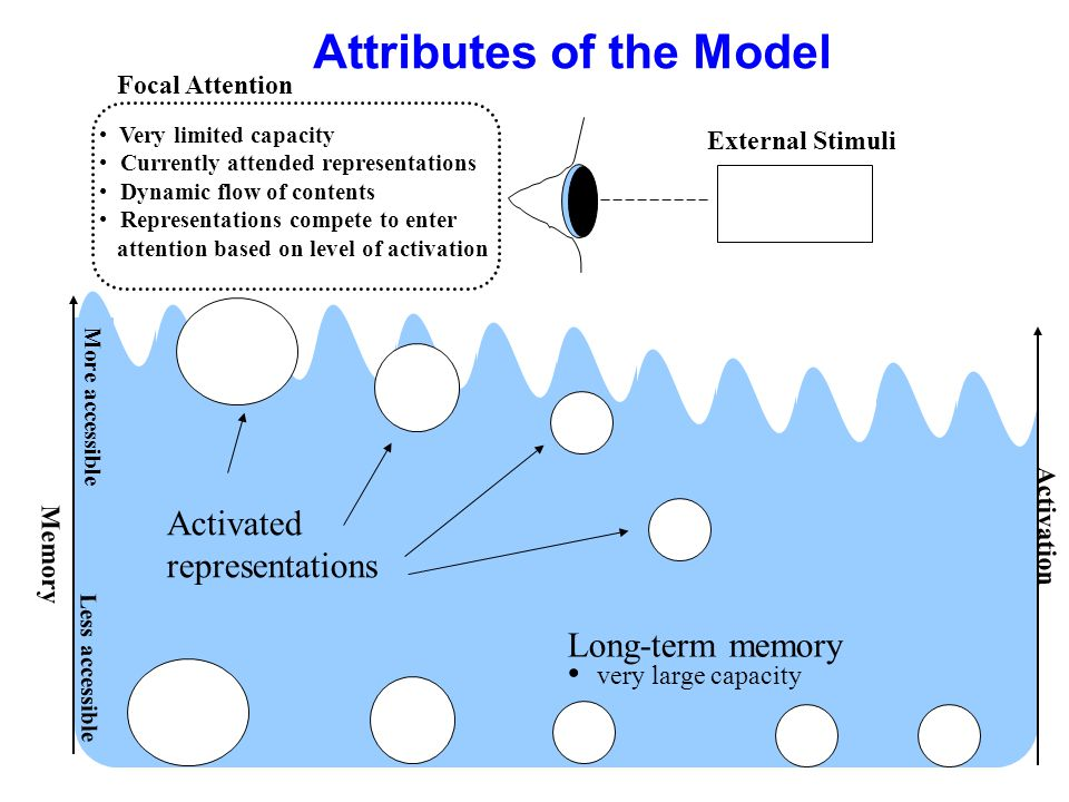 Attributes of the Model Memory More accessible Activated representations Activation Very limited capacity Currently attended representations Dynamic f