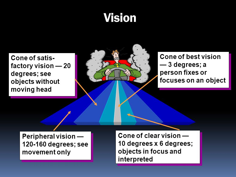 Vision Peripheral vision 120-160 degrees; see movement only Cone of satis- factory vision 20 degrees; see objects without moving head Cone of clear vi