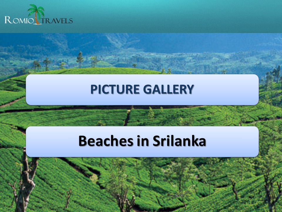 PICTURE GALLERY Beaches in Srilanka