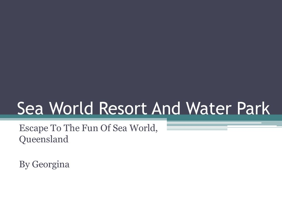 Sea World Resort And Water Park Escape To The Fun Of Sea World, Queensland By Georgina