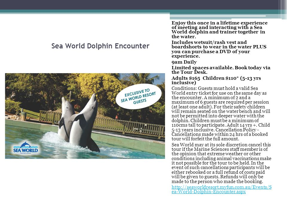 Sea World Dolphin Encounter Enjoy this once in a lifetime experience of meeting and interacting with a Sea World dolphin and trainer together in the w