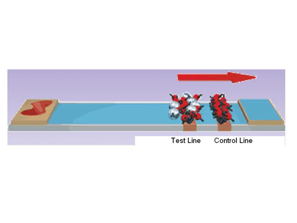 PCR Components DNA template (sample) Primer dNTPs TaqDNA polymerase