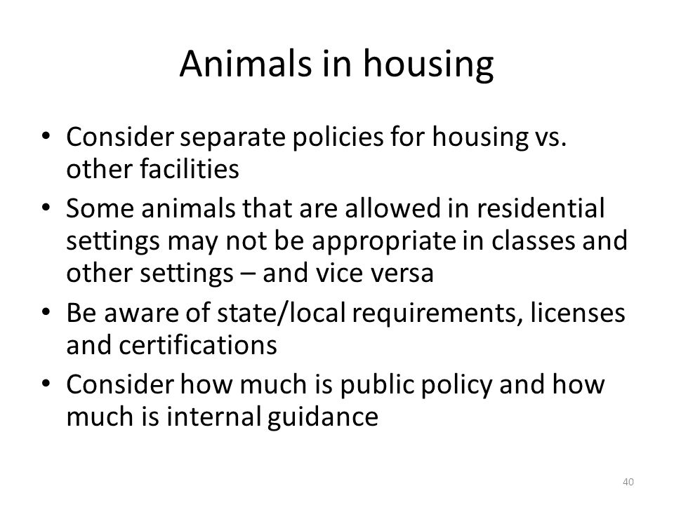 Animals in housing Consider separate policies for housing vs.