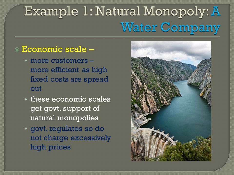 Economic scale – more customers – more efficient as high fixed costs are spread out these economic scales get govt. support of natural monopolies govt
