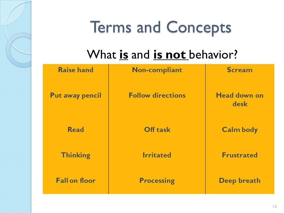 Behavior Change Process 15 Antecedent 2) What are precursor events Behavior 1) What is the target behavior Consequence 3) What is the pay-off Antecede