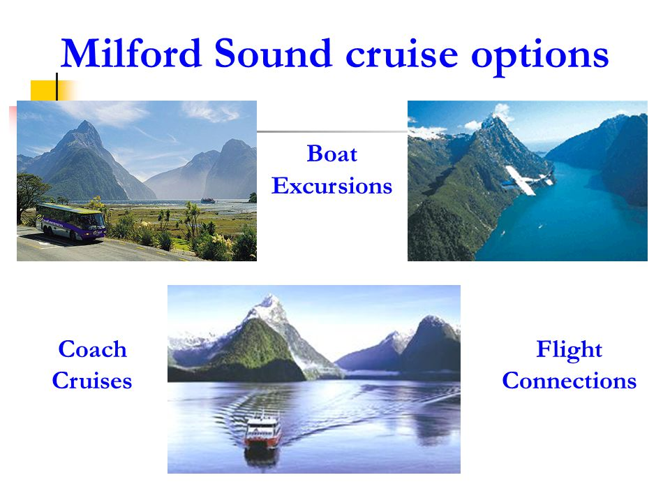 The Eighth Natural Wonder of Milford Sound Scenic Highlights