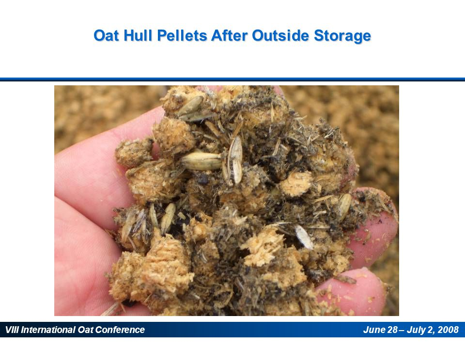 VIII International Oat ConferenceJune 28 – July 2, 2008 Oat Hull Pellets After Outside Storage