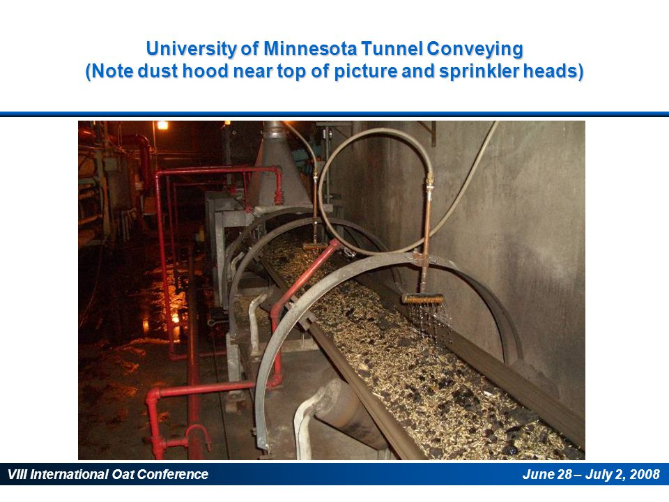 VIII International Oat ConferenceJune 28 – July 2, 2008 University of Minnesota Tunnel Conveying (Note dust hood near top of picture and sprinkler hea