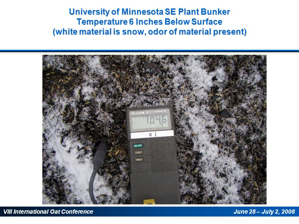 VIII International Oat ConferenceJune 28 – July 2, 2008 University of Minnesota SE Plant Bunker Temperature 6 Inches Below Surface (white material is