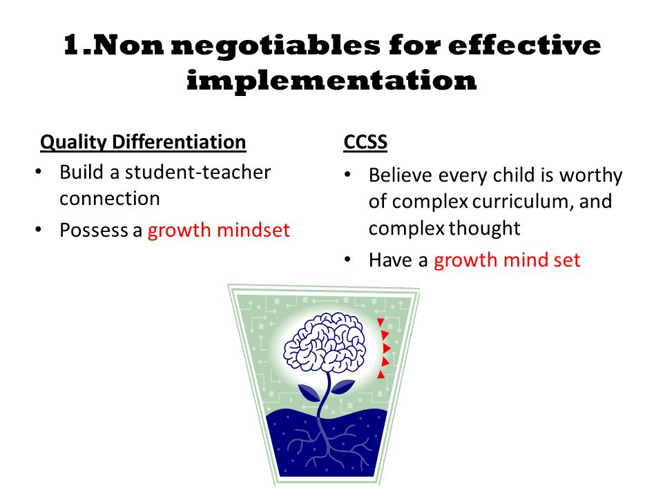 1.Non negotiables for effective implementation Quality Differentiation Build a student-teacher connection Possess a growth mindset CCSS Believe every child is worthy of complex curriculum, and complex thought Have a growth mind set