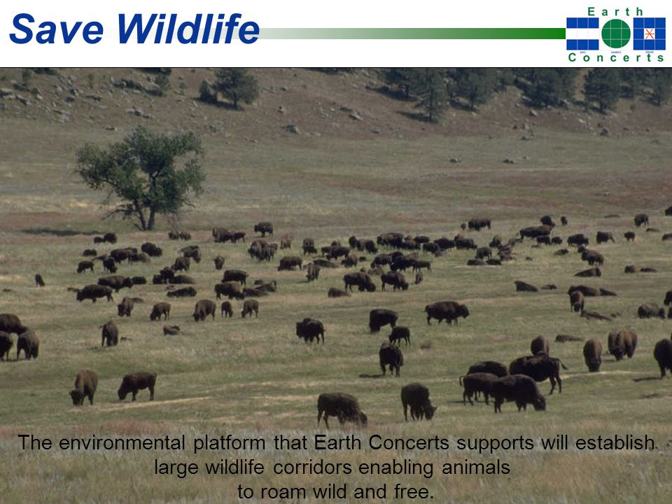 Save Wildlife The environmental platform that Earth Concerts supports will establish large wildlife corridors enabling animals to roam wild and free.