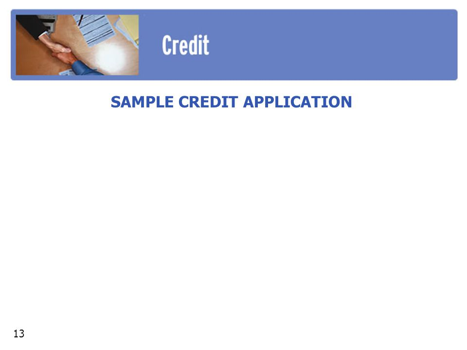 SAMPLE CREDIT APPLICATION 13