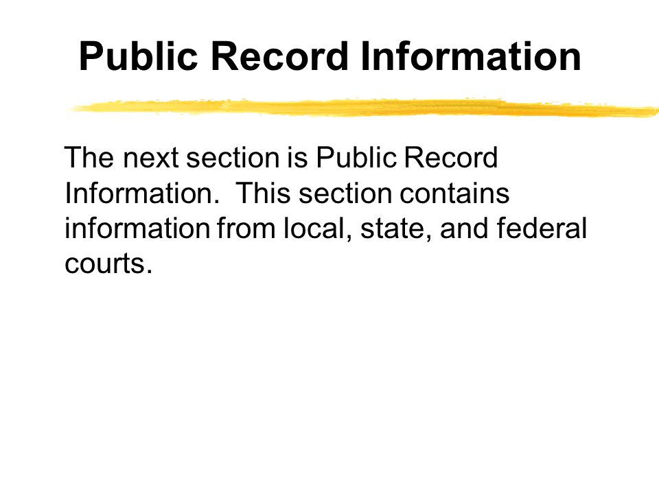 Public Record Information The next section is Public Record Information. This section contains information from local, state, and federal courts.