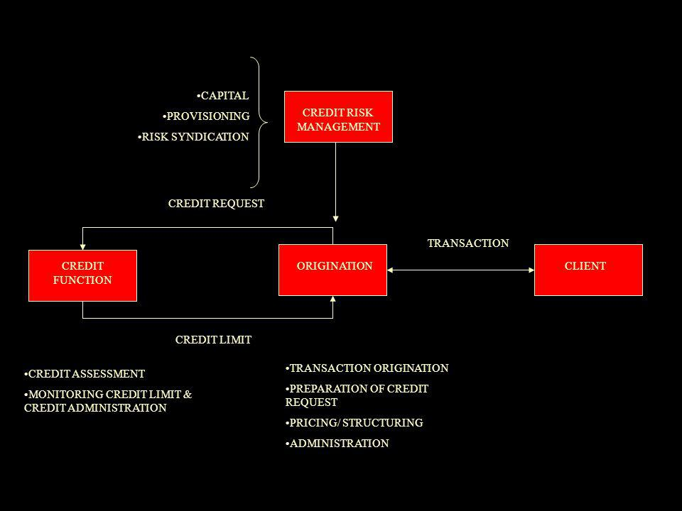 CREDIT REQUEST CREDIT LIMIT CREDIT FUNCTION ORIGINATIONCLIENT TRANSACTION CREDIT ASSESSMENT MONITORING CREDIT LIMIT & CREDIT ADMINISTRATION TRANSACTION ORIGINATION PREPARATION OF CREDIT REQUEST PRICING/ STRUCTURING ADMINISTRATION CREDIT RISK MANAGEMENT CAPITAL PROVISIONING RISK SYNDICATION