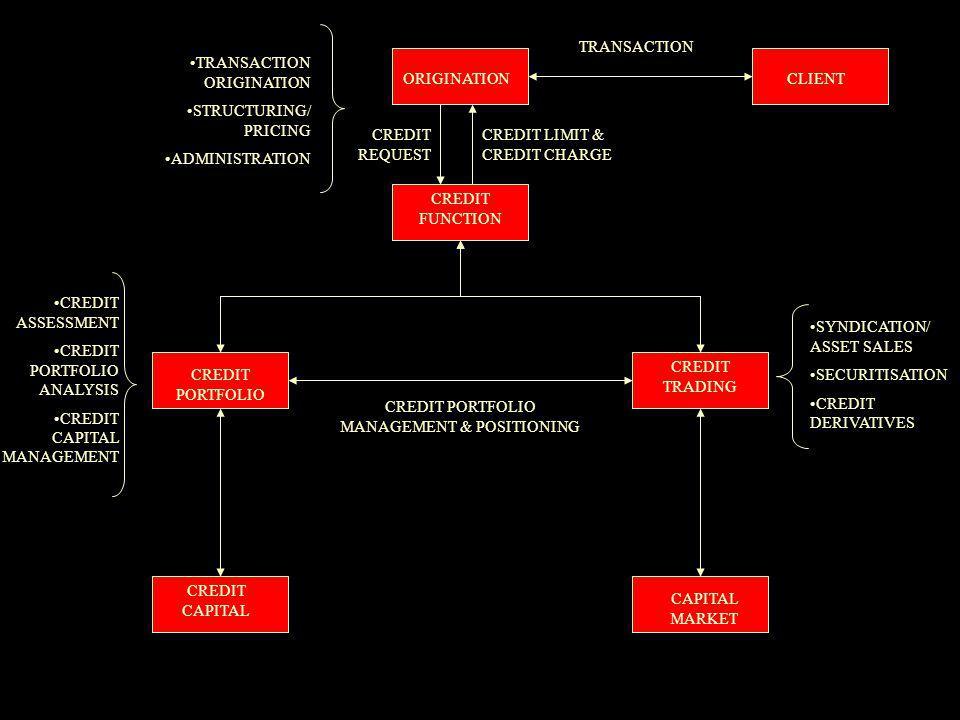 ORIGINATION CREDIT FUNCTION CREDIT PORTFOLIO CREDIT TRADING CAPITAL MARKET CREDIT CAPITAL CLIENT TRANSACTION CREDIT REQUEST CREDIT LIMIT & CREDIT CHARGE TRANSACTION ORIGINATION STRUCTURING/ PRICING ADMINISTRATION SYNDICATION/ ASSET SALES SECURITISATION CREDIT DERIVATIVES CREDIT ASSESSMENT CREDIT PORTFOLIO ANALYSIS CREDIT CAPITAL MANAGEMENT CREDIT PORTFOLIO MANAGEMENT & POSITIONING
