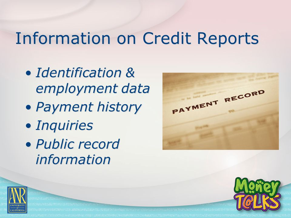 Information on Credit Reports Identification & employment data Payment history Inquiries Public record information Identification & employment data Pa