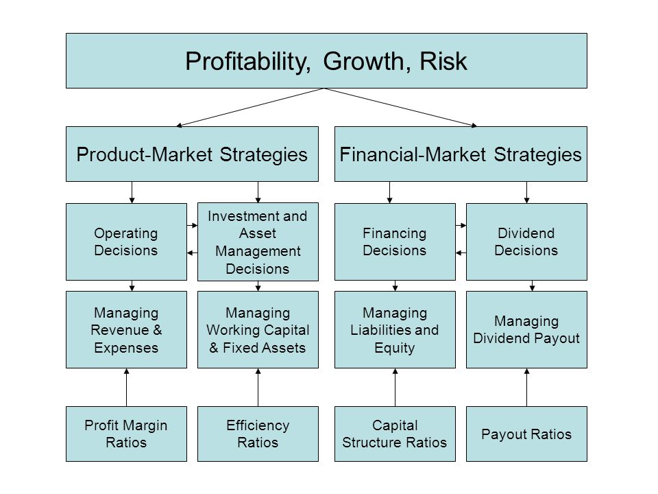 Profitability, Growth, Risk Product-Market StrategiesFinancial-Market Strategies Operating Decisions Investment and Asset Management Decisions Financi