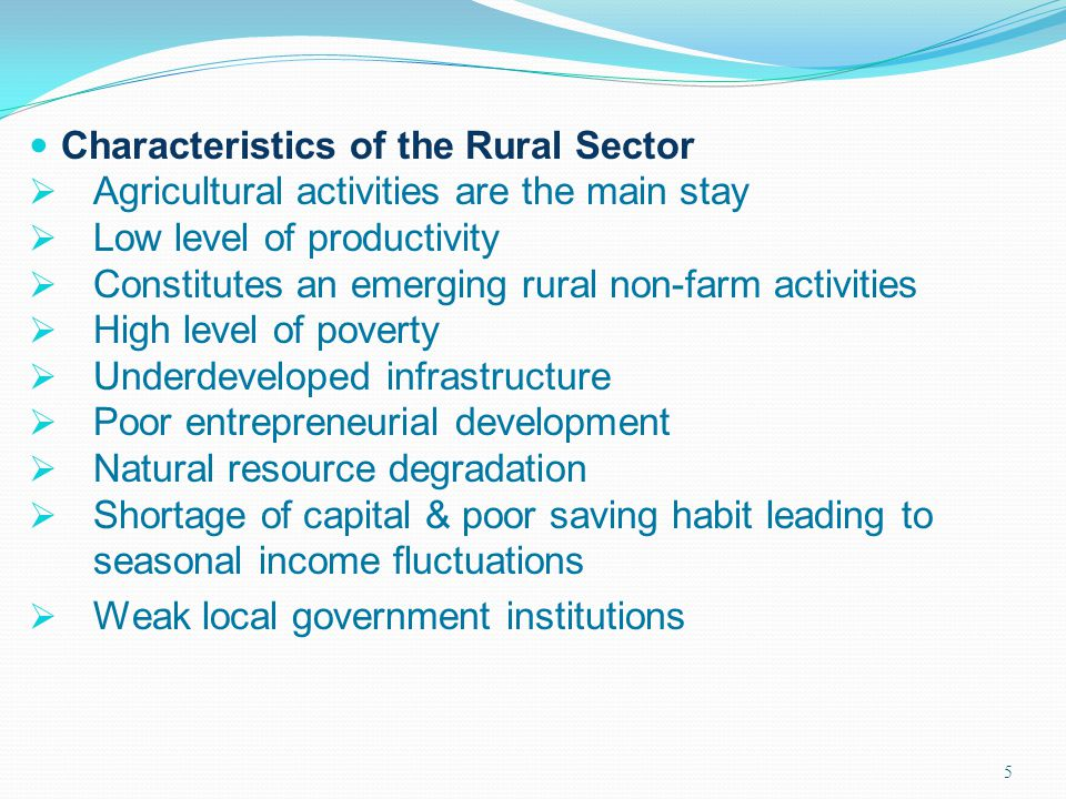 5 Characteristics of the Rural Sector Agricultural activities are the main stay Low level of productivity Constitutes an emerging rural non-farm activ