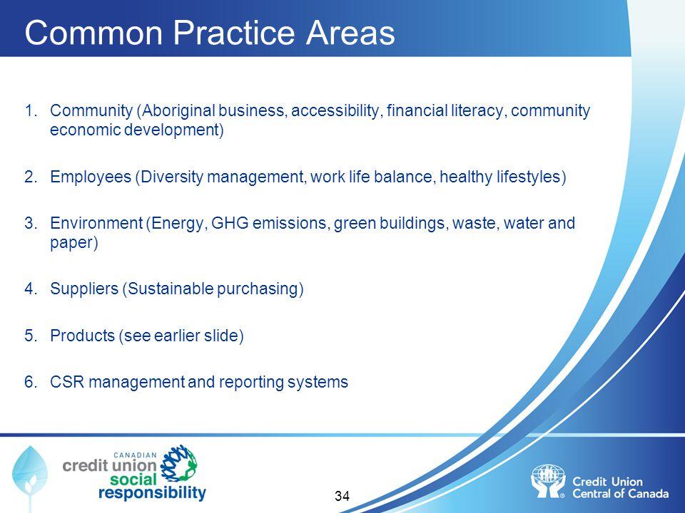 Common Practice Areas 1.Community (Aboriginal business, accessibility, financial literacy, community economic development) 2.Employees (Diversity mana