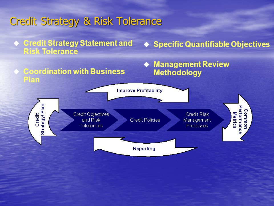Credit Strategy & Risk Tolerance Specific Quantifiable Objectives Management Review Methodology Credit Strategy Statement and Risk Tolerance Coordination with Business Plan