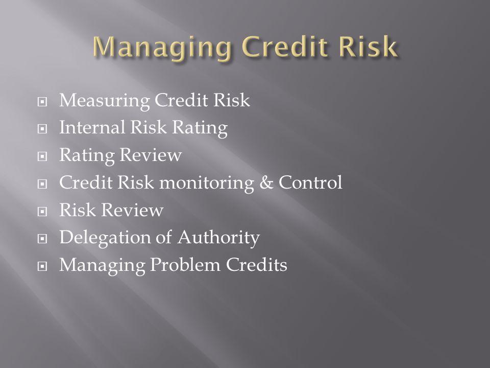 Measuring Credit Risk Internal Risk Rating Rating Review Credit Risk monitoring & Control Risk Review Delegation of Authority Managing Problem Credits