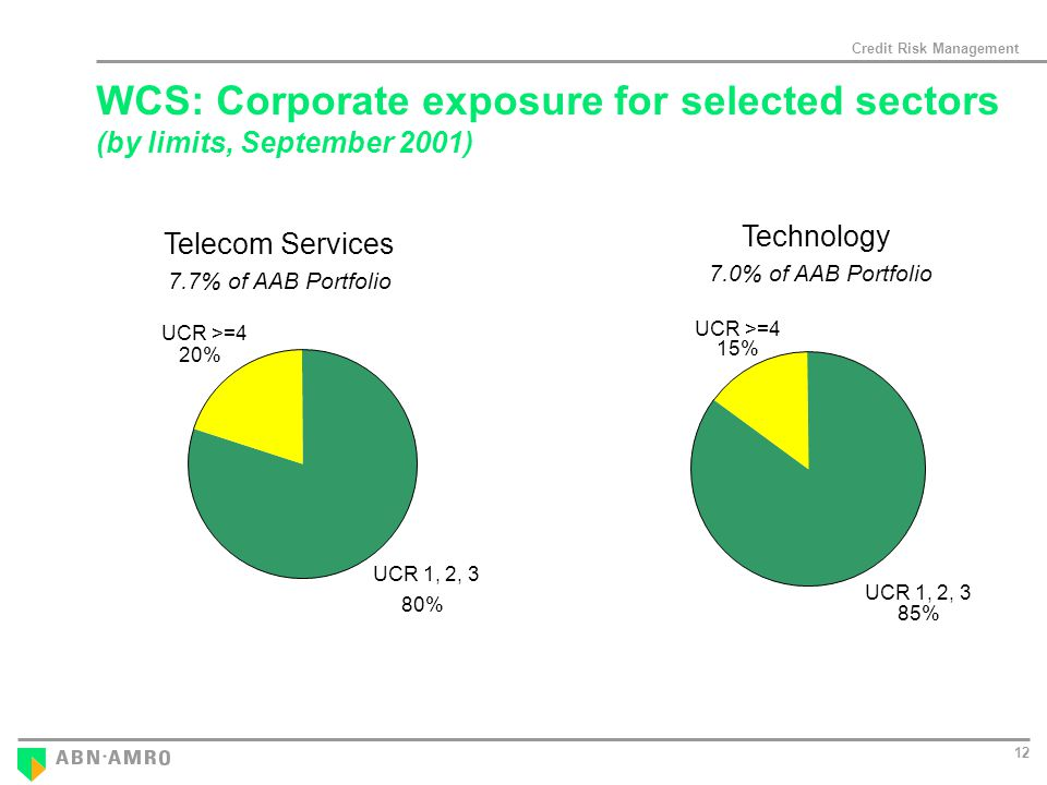 Credit Risk Management 12 Telecom Services 7.7% of AAB Portfolio 7.0% of AAB Portfolio Technology UCR 1, 2, 3 80% UCR >=4 20% UCR 1, 2, 3 85% UCR >=4 15% WCS: Corporate exposure for selected sectors (by limits, September 2001)