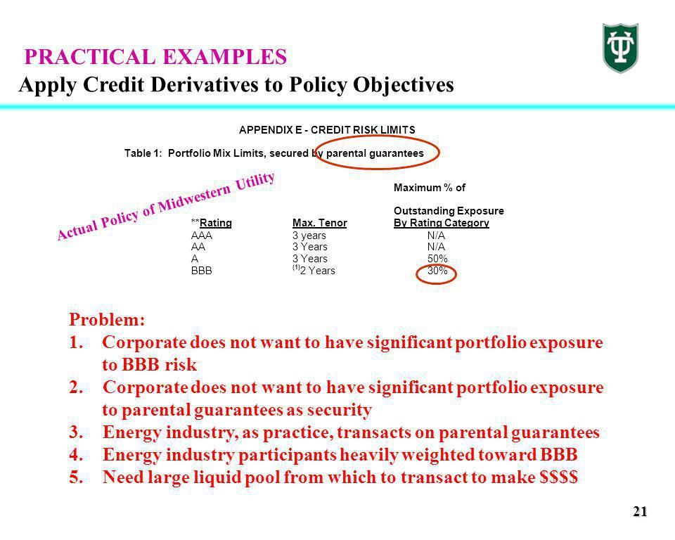 21 Apply Credit Derivatives to Policy Objectives APPENDIX E - CREDIT RISK LIMITS Table 1: Portfolio Mix Limits, secured by parental guarantees Maximum