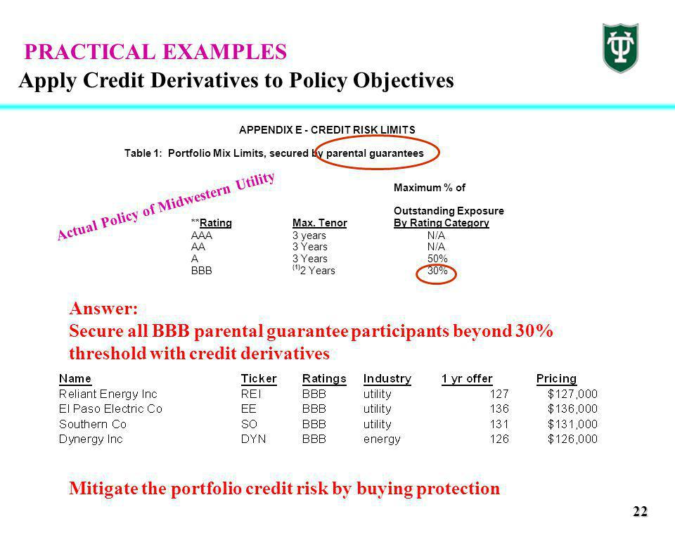 22 Apply Credit Derivatives to Policy Objectives APPENDIX E - CREDIT RISK LIMITS Table 1: Portfolio Mix Limits, secured by parental guarantees Maximum % of Outstanding Exposure **RatingMax.