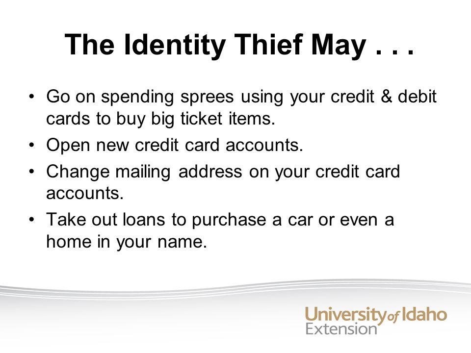 The Identity Thief May...
