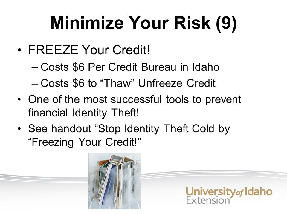 Minimize Your Risk (9) FREEZE Your Credit.