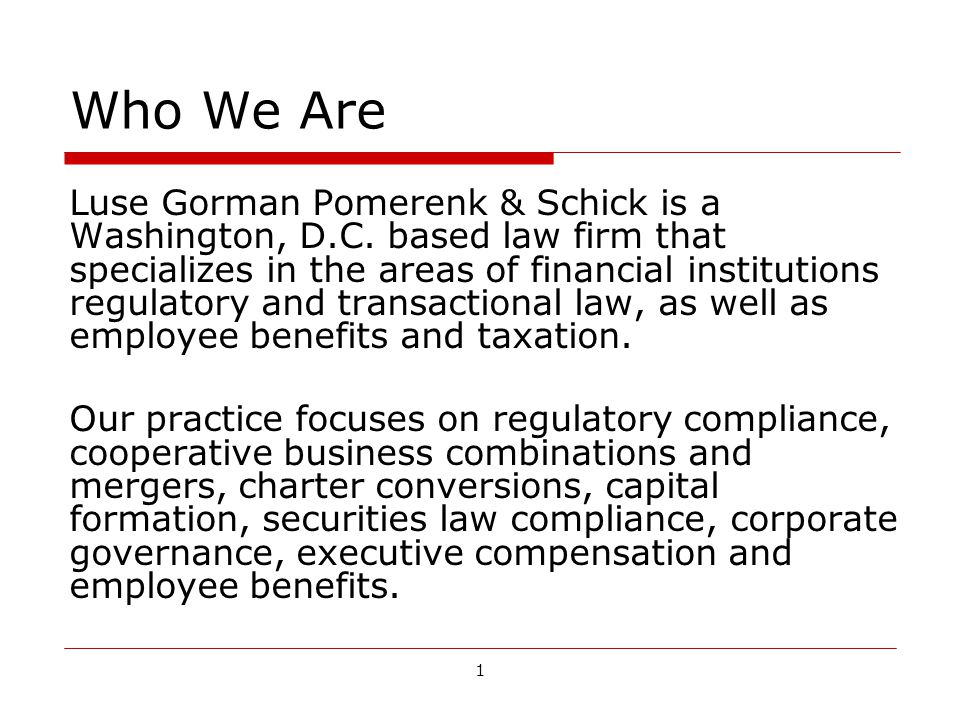 1 Who We Are Luse Gorman Pomerenk & Schick is a Washington, D.C.
