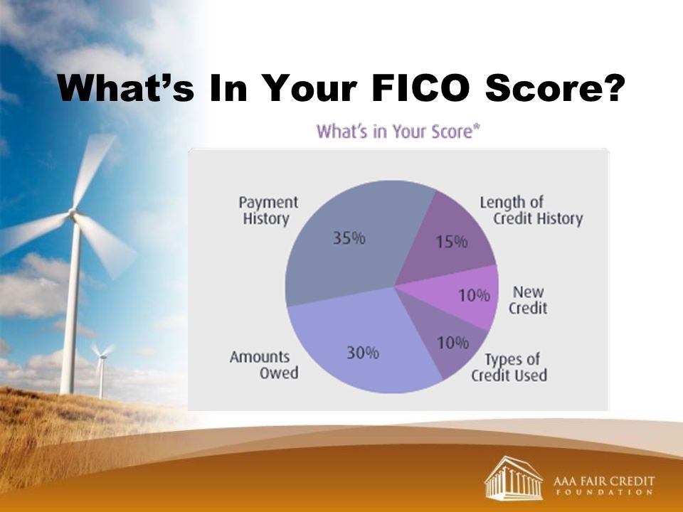 Whats In Your FICO Score?