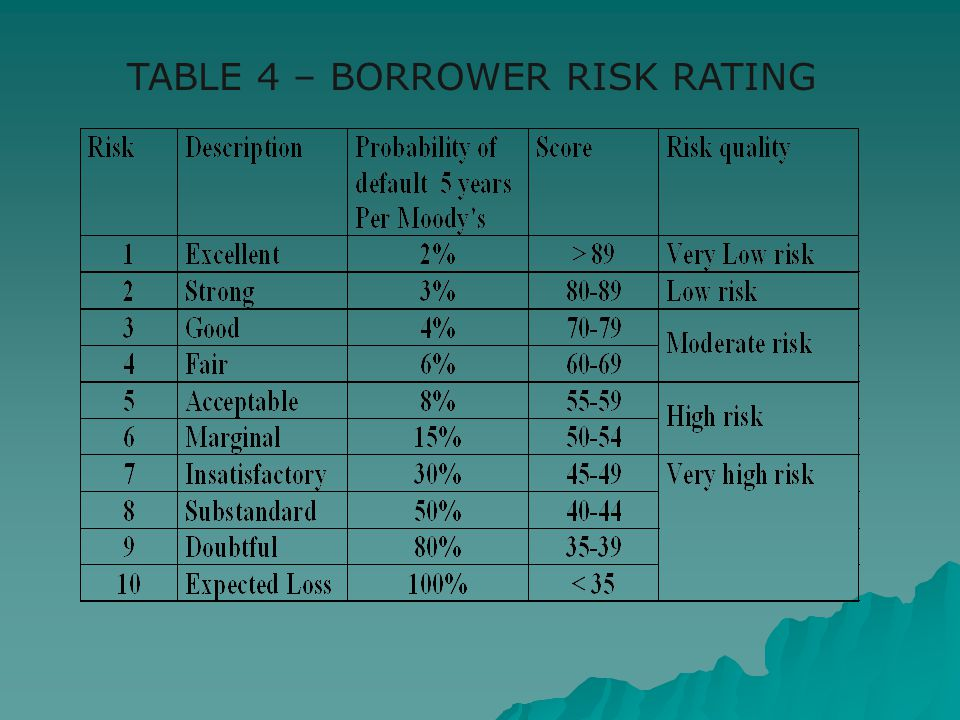TABLE 4 – BORROWER RISK RATING