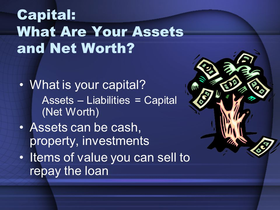 Capital: What Are Your Assets and Net Worth.What is your capital.