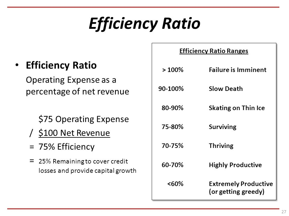 Efficiency Ratio Operating Expense as a percentage of net revenue $75 Operating Expense /$100 Net Revenue =75% Efficiency = 25% Remaining to cover credit losses and provide capital growth Efficiency Ratio Ranges > 100%Failure is Imminent %Slow Death 80-90%Skating on Thin Ice 75-80%Surviving 70-75%Thriving 60-70%Highly Productive <60%Extremely Productive (or getting greedy) Efficiency Ratio Ranges > 100%Failure is Imminent %Slow Death 80-90%Skating on Thin Ice 75-80%Surviving 70-75%Thriving 60-70%Highly Productive <60%Extremely Productive (or getting greedy) 27