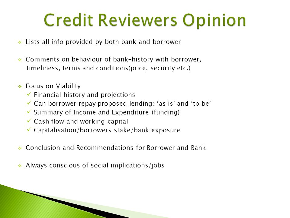 Lists all info provided by both bank and borrower Comments on behaviour of bank-history with borrower, timeliness, terms and conditions(price, security etc.) Focus on Viability Financial history and projections Can borrower repay proposed lending: as is and to be Summary of Income and Expenditure (funding) Cash flow and working capital Capitalisation/borrowers stake/bank exposure Conclusion and Recommendations for Borrower and Bank Always conscious of social implications/jobs