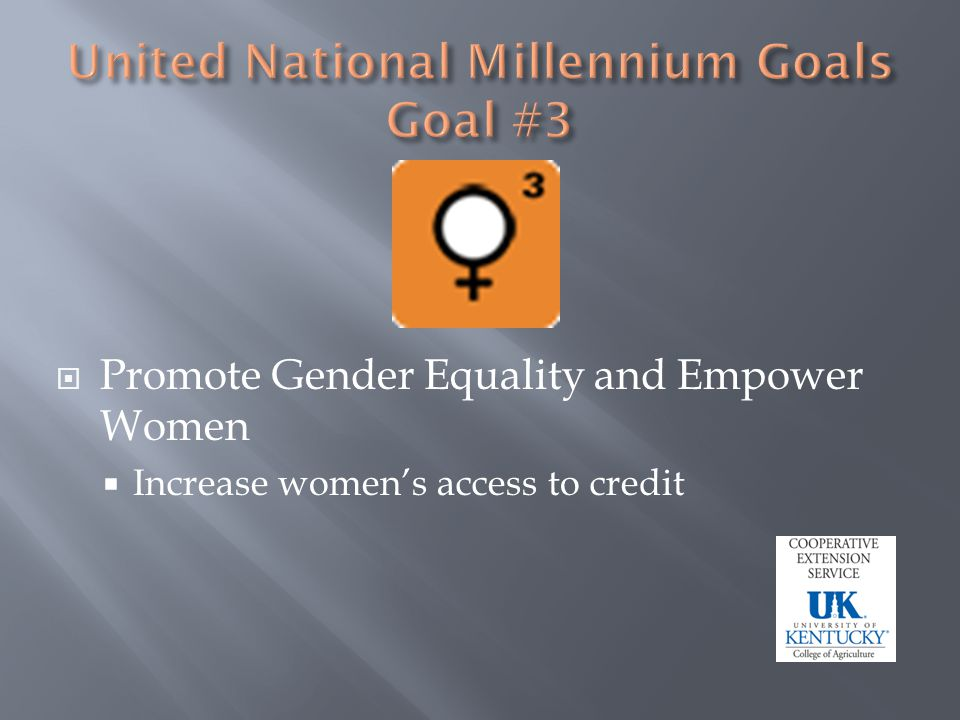 Promote Gender Equality and Empower Women Increase womens access to credit
