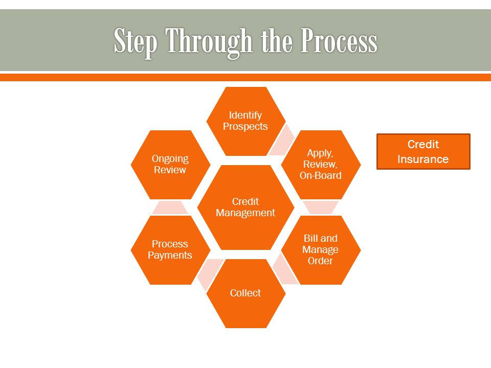 Credit Management Identify Prospects Apply, Review, On-Board Bill and Manage Order Collect Process Payments Ongoing Review Credit Insurance