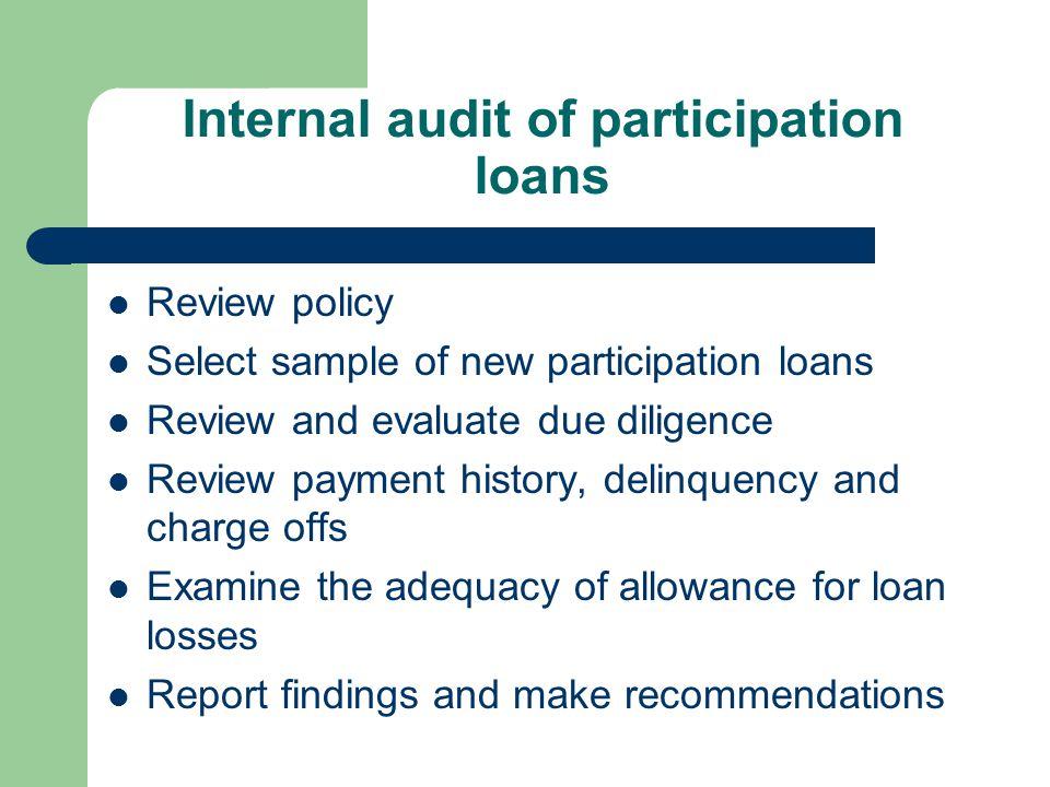 Internal audit of participation loans Review policy Select sample of new participation loans Review and evaluate due diligence Review payment history,