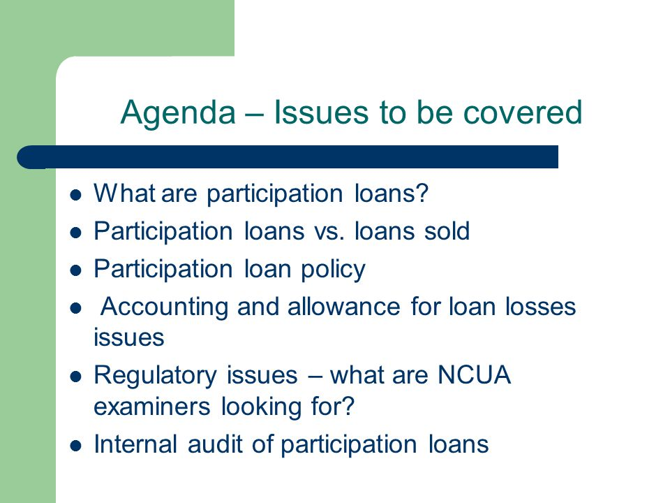 Agenda – Issues to be covered What are participation loans.