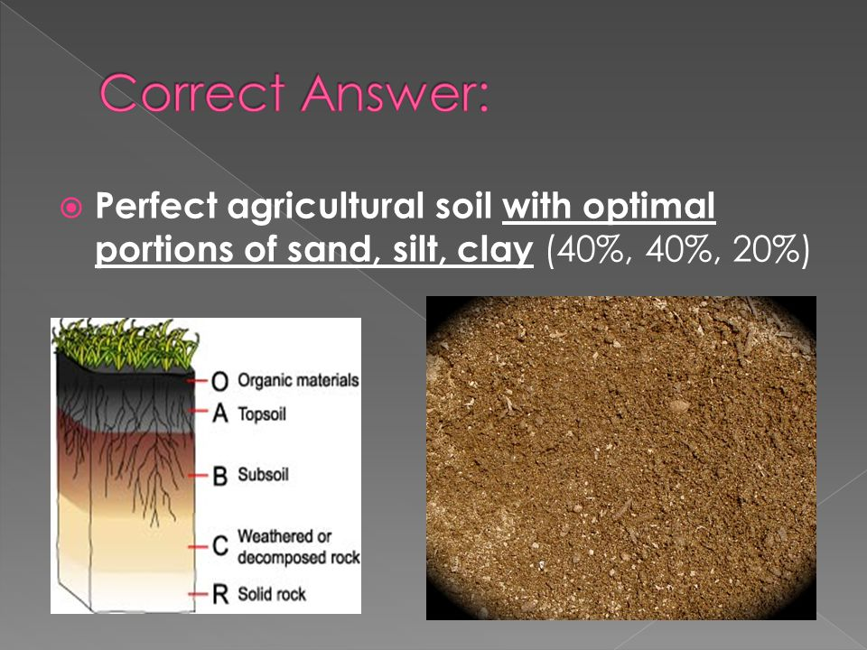 Perfect agricultural soil with optimal portions of sand, silt, clay (40%, 40%, 20%)