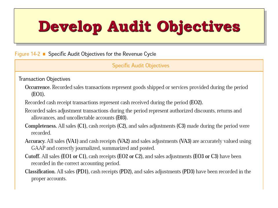 Develop Audit Objectives