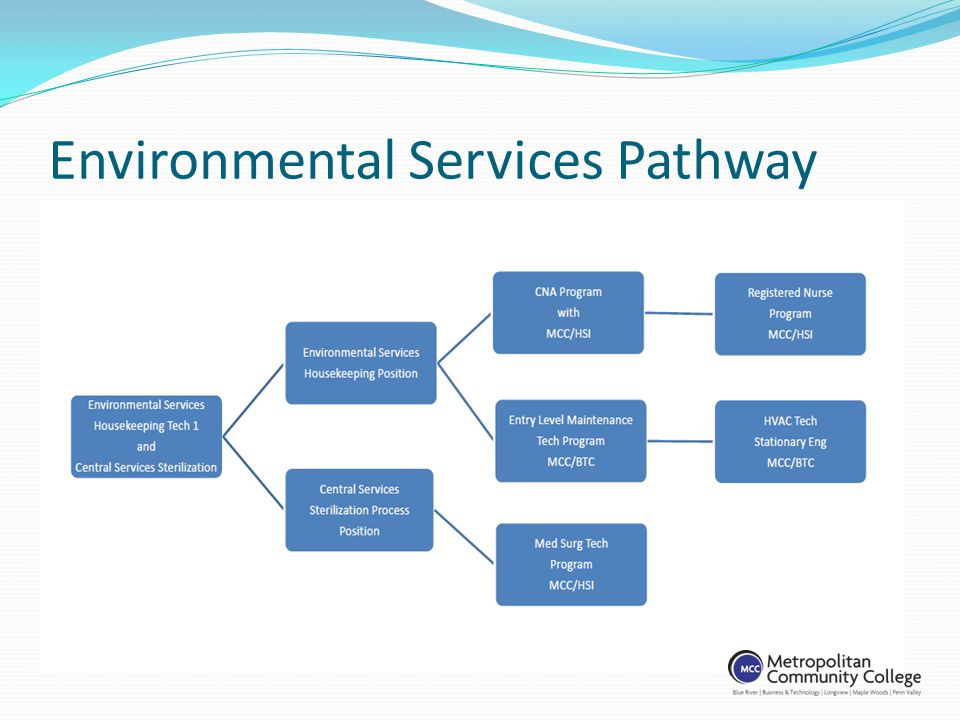 Environmental Services Pathway