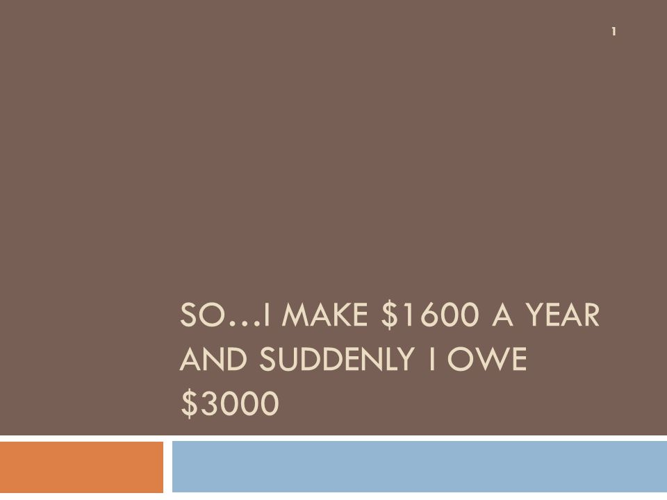 SO…I MAKE $1600 A YEAR AND SUDDENLY I OWE $3000 1