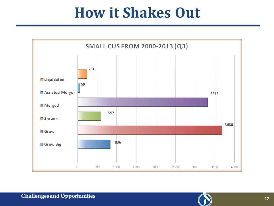 How it Shakes Out Challenges and Opportunities 12