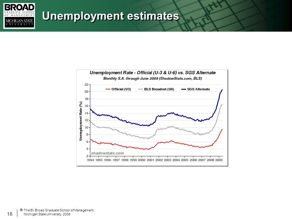 18 The Eli Broad Graduate School of Management, Michigan State University, 2008 Unemployment estimates