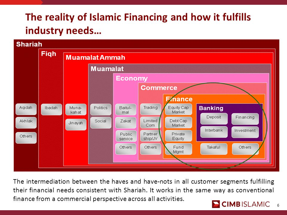 6 The reality of Islamic Financing and how it fulfills industry needs… The intermediation between the haves and have-nots in all customer segments fulfilling their financial needs consistent with Shariah.